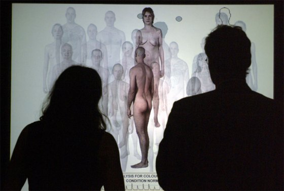 Two people (seen from the back) watch a video installation on which are naked people