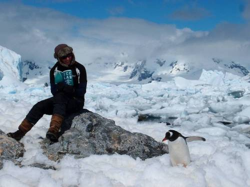 A person sitting on a rock reading the Ice Lab book surrounded by snow and one penguin.