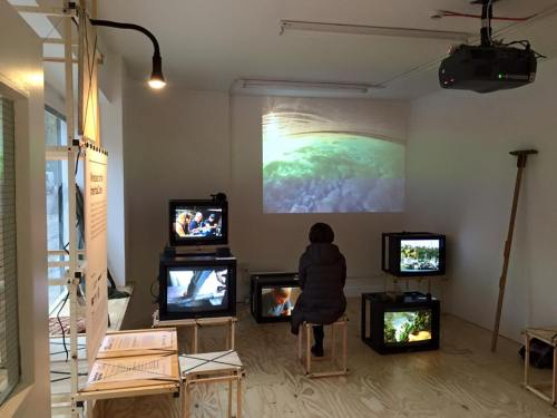 Wrecked on the Inter-tidal Zone - installation shot. Photo: Alec Steadman