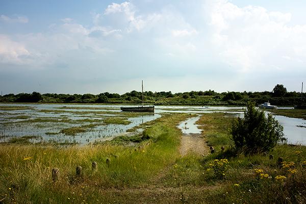Boat on marsh