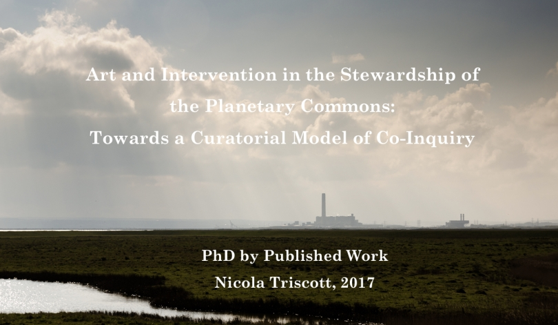 Art and Intervention in the Stewardship of the Planetary Commons: Towards a Curatorial Model of Co-Inquiry. PhD by Published Work. Nicola Triscott, 2017.